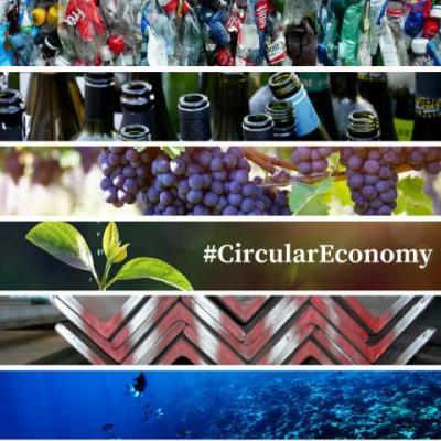 Transformación modelo lineal a economía circular