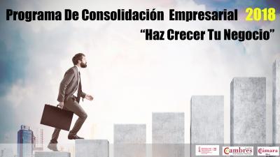 Plan Consolidación empresarial