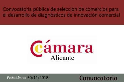Convocatoria Cámara Alicante