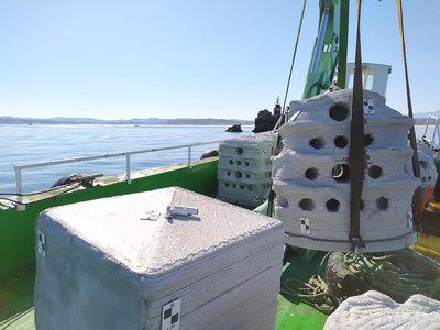 La UC sumerge en la bahía de Santander nueve arrecifes artificiales dentro de un proyecto europeo