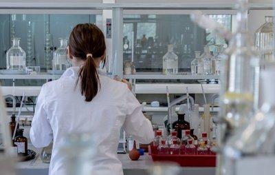 Bioval impulsará la bioeconomía en los sectores tradicionales valencianos